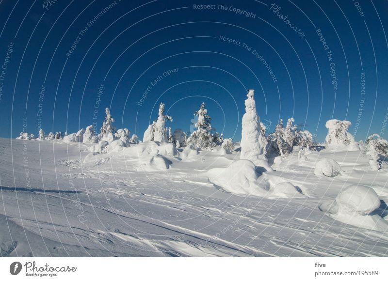luosto II Ferien & Urlaub & Reisen Tourismus Ferne Winter Schnee Winterurlaub Berge u. Gebirge Natur Landschaft Himmel Wolkenloser Himmel Schönes Wetter Eis
