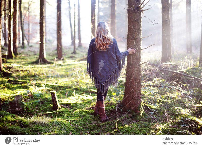 Frühlingserwachen Mensch Frau Natur Jugendliche Pflanze Junge Frau Sonne Landschaft Erholung Wald 18-30 Jahre Erwachsene Umwelt natürlich feminin