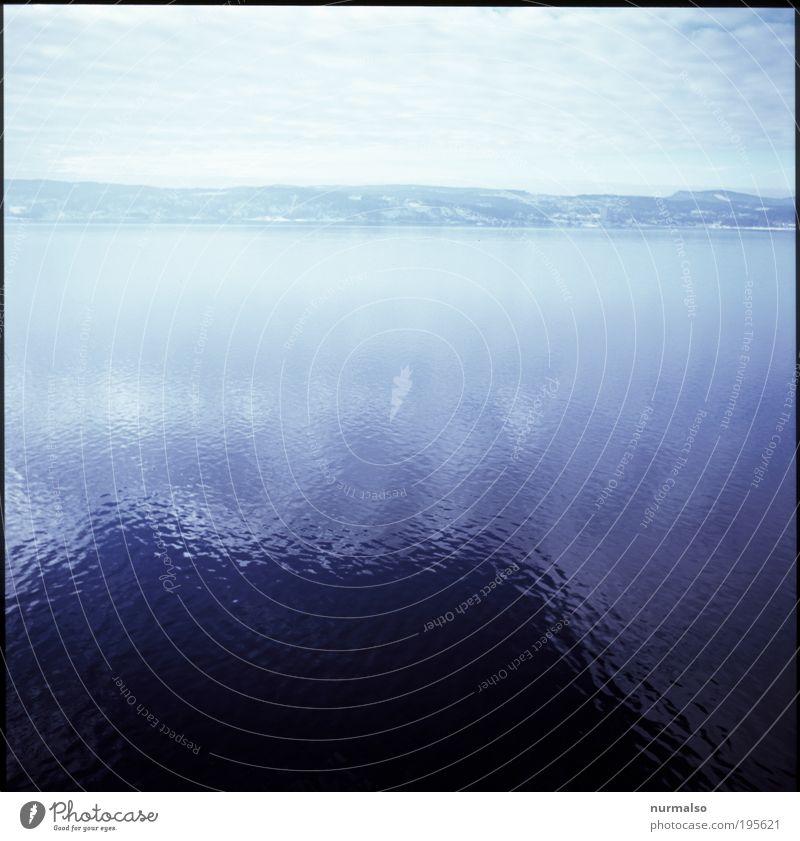 Schatten auf dem Fjord Natur Wasser Meer Winter Ferien & Urlaub & Reisen Berge u. Gebirge Landschaft Eis Kunst glänzend Horizont Ausflug ästhetisch fahren Frost