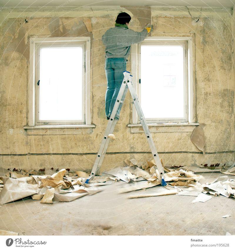 Renovierung Mensch Frau blau Erwachsene gelb Fenster Wand Mauer Raum Arbeit & Erwerbstätigkeit Wohnung Häusliches Leben einzeln Tapete Handwerk Leiter