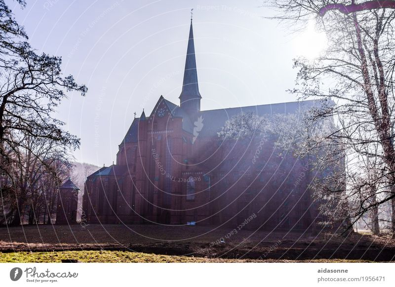 Münster bad doberan Deutschland Menschenleer Kirche Sehenswürdigkeit Wahrzeichen Zufriedenheit ruhig Hoffnung Glaube demütig Farbfoto Außenaufnahme Tag