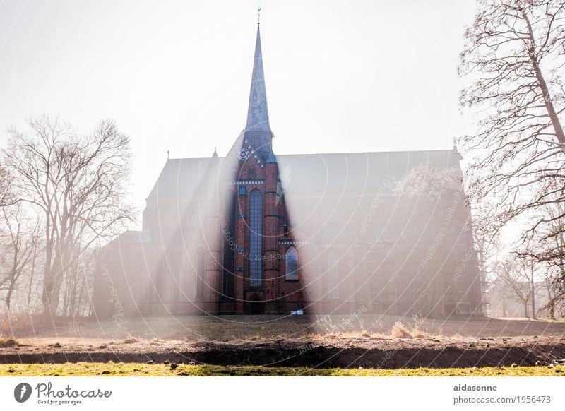 Münster in Bad Doberan Bad doberan deutschalland Deutschland Kirche Sehenswürdigkeit Wahrzeichen Stimmung Zufriedenheit friedlich Vorsicht Gelassenheit ruhig