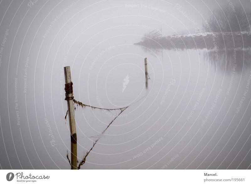 Einsam, Still und Kalt ! Natur Wasser weiß schwarz Einsamkeit dunkel kalt Erholung Gefühle grau Eis Stimmung braun Nebel nass
