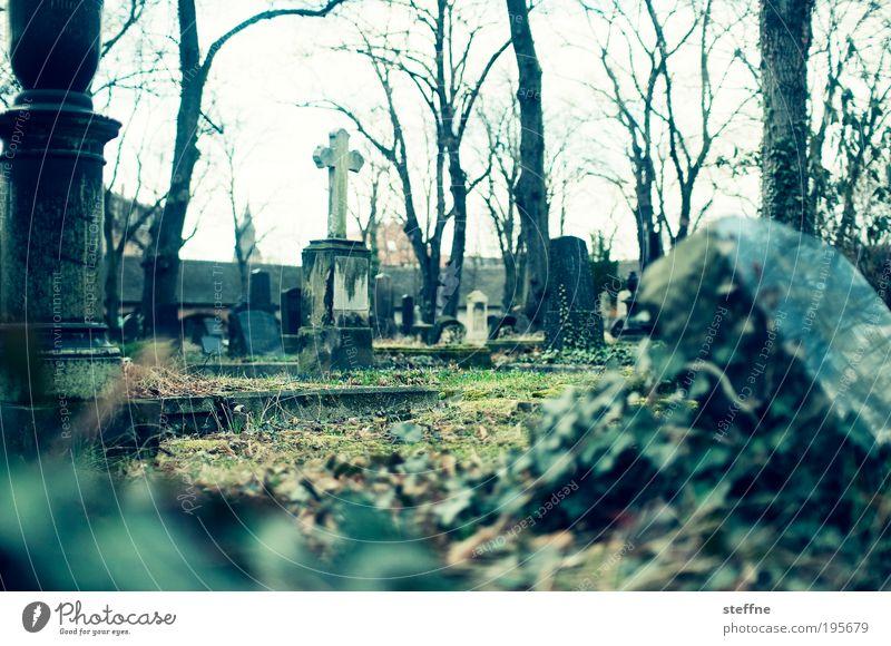 Wiederauferstehung Halle (Saale) Religion & Glaube Friedhof Auferstehung Grab Gruft Farbfoto Experiment Kreuz Christliches Kreuz Grabmal Grabstein Trauer