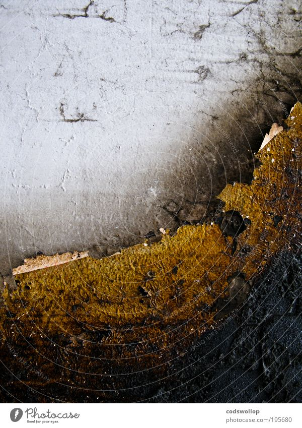 oberflächenbeschädigung schwarz dunkel Wand grau Mauer gold Beton Fassade trist Schifffahrt Strukturen & Formen Schaden verbrannt