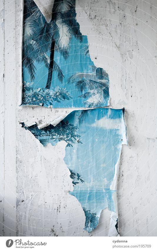 Broken Paradise Lifestyle Stil Design exotisch Ferien & Urlaub & Reisen Ferne Freiheit Häusliches Leben Renovieren Dekoration & Verzierung Mauer Wand ästhetisch