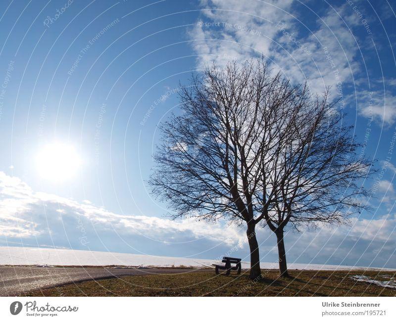 Schneeschmelze II Winter Natur Landschaft Erde Luft Himmel Wolken Sonnenlicht Schönes Wetter Baum Feld Zusammenhalt Paar 2 Bank Aussicht Ruhe Erholung