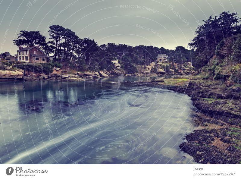Flut blau grün Wasser Landschaft Haus Küste braun Idylle Frankreich