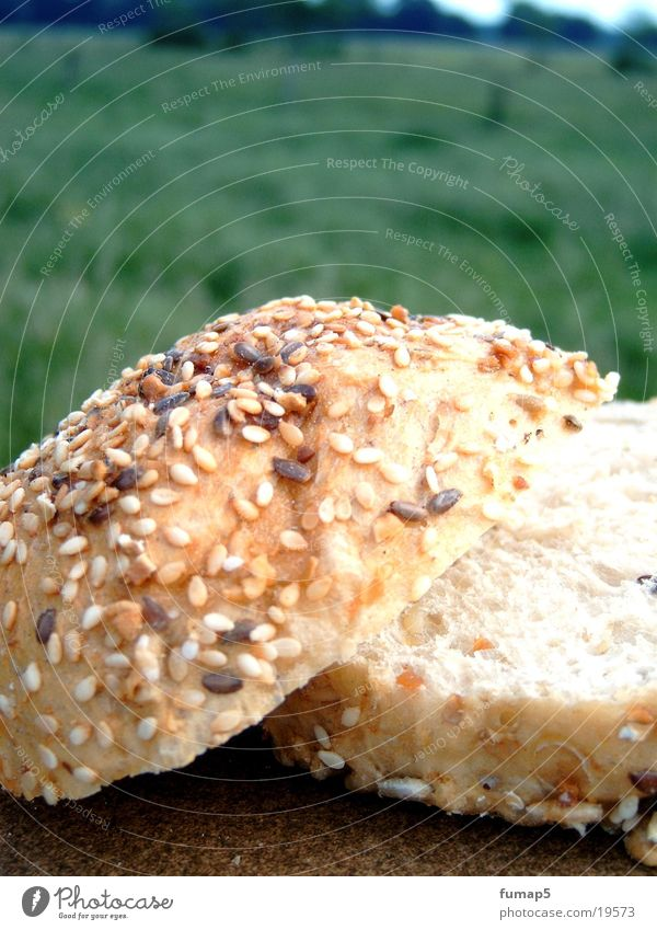 Natur Brötchen Wiese Holz Gesundheit Korn Brötchen geschnitten Teigwaren