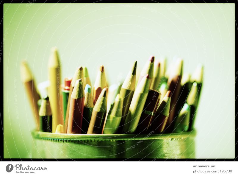 Stiftedose Schreibwaren Schreibstift zeichnen mehrfarbig grün Zeichnung Farbfoto Studioaufnahme Nahaufnahme Menschenleer Kunstlicht Starke Tiefenschärfe
