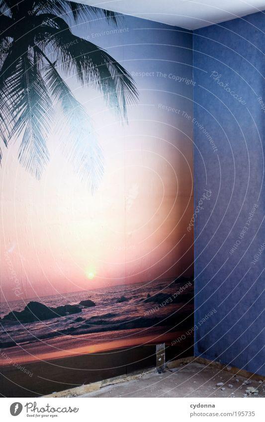 Tropisch Natur Ferien & Urlaub & Reisen ruhig Einsamkeit Ferne Leben Wand Stil Freiheit träumen Mauer Design Zeit Lifestyle Hoffnung ästhetisch