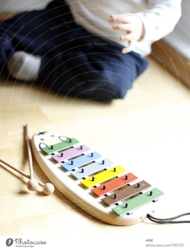 Musikalische Früherziehung Mensch Kind Erwachsene hell Musik Kindheit Zufriedenheit Baby Fröhlichkeit lernen Kleinkind entdecken Leichtigkeit Musikinstrument Kindererziehung krabbeln