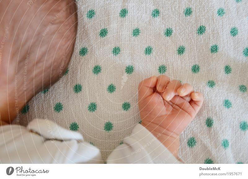 Hand und Haar Mensch Baby Haut Kopf Haare & Frisuren Finger 1 0-12 Monate brünett Punkt Erholung liegen schlafen klein niedlich Wärme grün rosa weiß