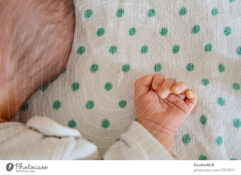 Hinterkopf und Hand eines Babys Mensch Haut Kopf Haare & Frisuren Finger 1 0-12 Monate brünett Punkt Erholung liegen schlafen klein niedlich Wärme grün rosa