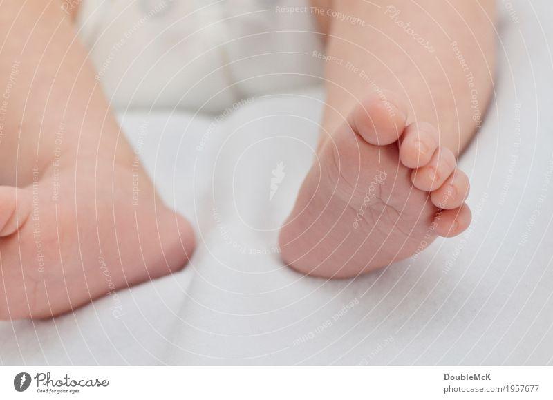 Babyfüße barfuß Mensch Haut Beine Fuß Zehen Zehennagel 1 0-12 Monate liegen klein nackt niedlich Wärme rosa weiß Freude Zufriedenheit Geborgenheit Gefühle