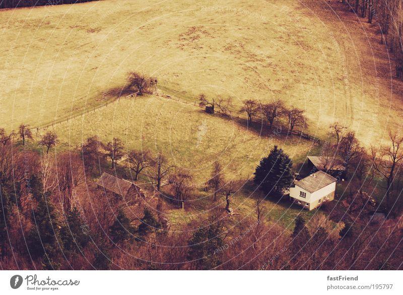 unsere kleine Farm Wiese Gras Gebäude Haus Bauernhof Wald Gegend Baum Landschaft