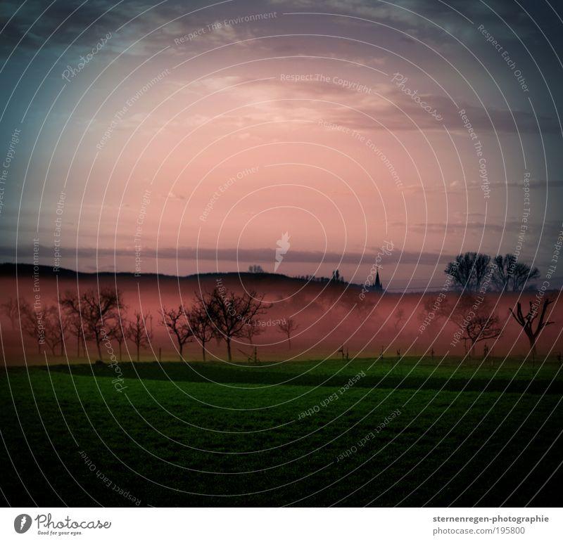 nebel Natur Himmel Baum Pflanze Ferien & Urlaub & Reisen ruhig Wolken Ferne Wiese Gras Frühling Freiheit Luft Feld Nebel
