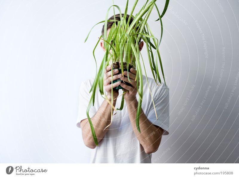 Versteckspiel Lifestyle Stil Gesundheit Leben Wohlgefühl Mensch Mann Erwachsene Hand 18-30 Jahre Jugendliche Topfpflanze geheimnisvoll Idee Kreativität