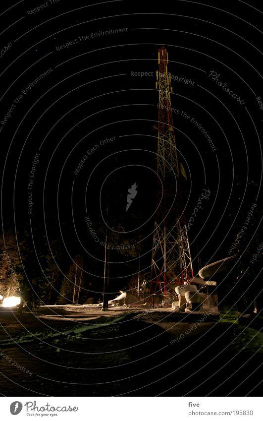 luosto III Baum Pflanze Ferien & Urlaub & Reisen Winter schwarz Ferne kalt dunkel Schnee Freiheit Lampe Turm Skandinavien Finnland Winterurlaub Lampenlicht