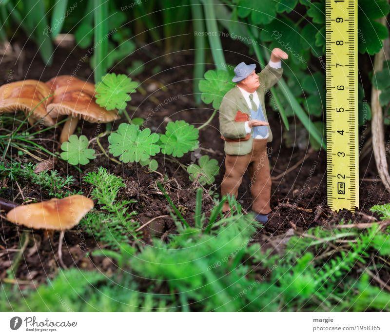 Miniwelten - Größenvergleich Mensch Mann Pflanze grün Blatt Tier Wald Erwachsene Gras Garten braun maskulin Wachstum Erde Sträucher Landwirtschaft