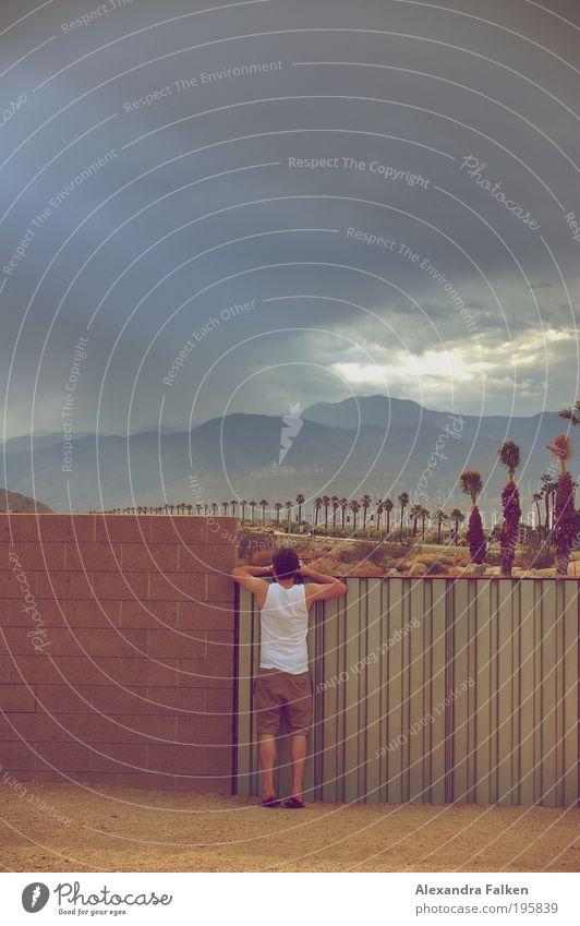 Palm Springs maskulin Junger Mann Jugendliche 1 Mensch 18-30 Jahre Erwachsene Natur Landschaft Wolken Gewitterwolken Sommer Klima Schönes Wetter