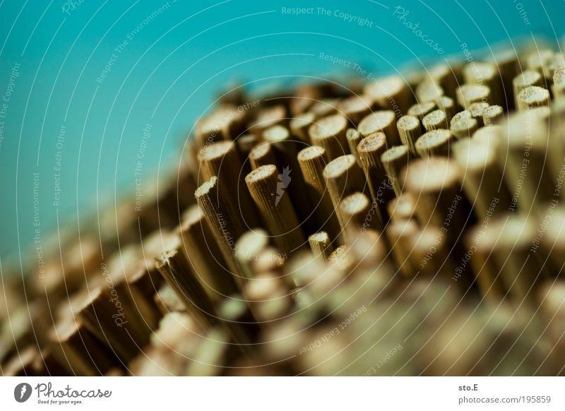 auf und ab Natur Umwelt Holz Erde Linie Arbeit & Erwerbstätigkeit Erfolg planen Industrie Sträucher Streifen Wandel & Veränderung Dekoration & Verzierung Kitsch