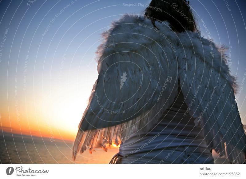 Engel Rücken Wolkenloser Himmel Vogel Flügel atmen beobachten fliegen Jagd Blick träumen frei rebellisch weiß Euphorie Macht Übermut Ewigkeit Schutz unschuldig