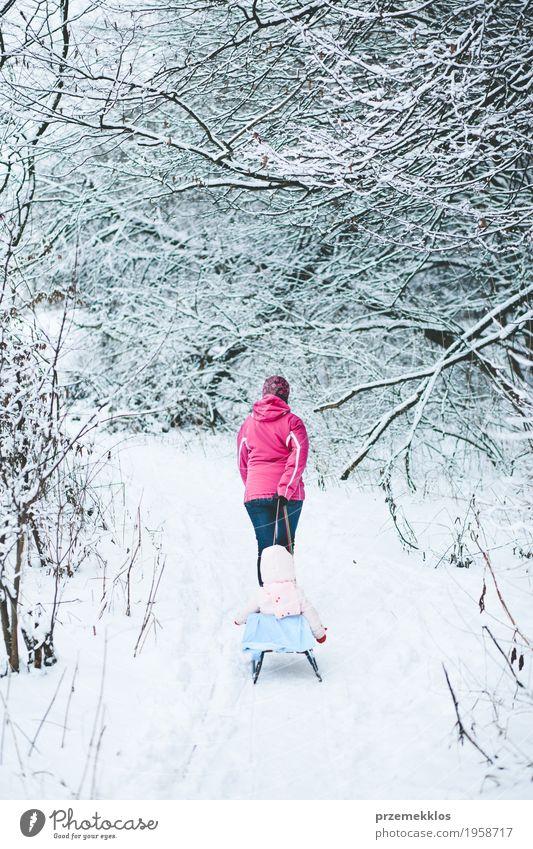 Frau, die Schlitten mit ihrer kleinen Tochter zieht Mensch Kind Natur Ferien & Urlaub & Reisen weiß Baum Erholung Freude Mädchen Winter Wald Erwachsene Leben