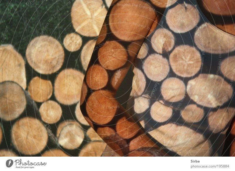 Holzkopf Baum Arme Klima T-Shirt Brust Mensch Licht
