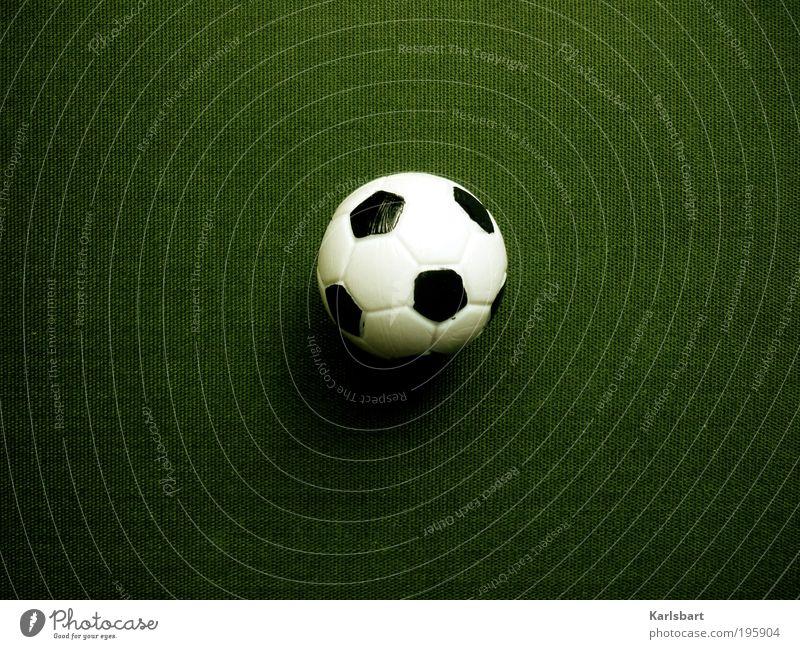 weltmeister sein. grün Freude Wiese Sport Spielen Gefühle Linie Freizeit & Hobby Fußball Design Erfolg Lifestyle Hoffnung Ball Kultur Leidenschaft