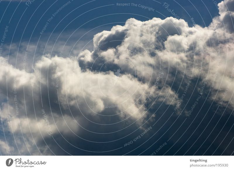 feeling free Natur schön weiß blau Wolken Ferne oben Luft Nebel Wetter Umwelt Unendlichkeit natürlich leuchten Urelemente Schönes Wetter