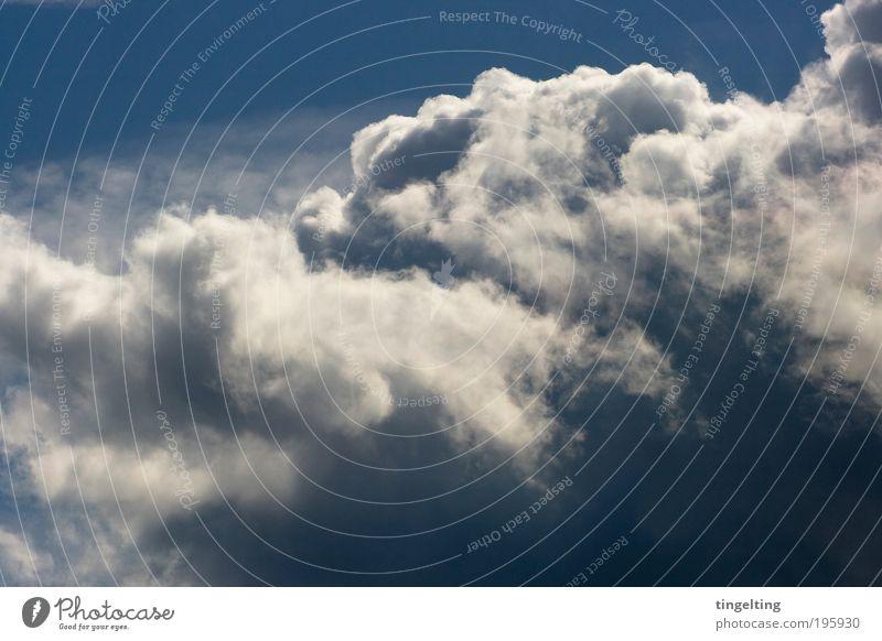 feeling free Umwelt Natur Urelemente Luft nur Himmel Wolken Wetter Schönes Wetter Blick leuchten Ferne gigantisch Unendlichkeit natürlich oben blau weiß