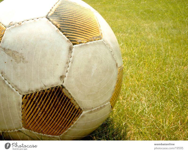 Saison hat begonnen Gras Sommer Sport gebraucht Nahaufnahme schäbig Detailaufnahme Sportrasen Fußball Menschenleer Außenaufnahme Farbfoto