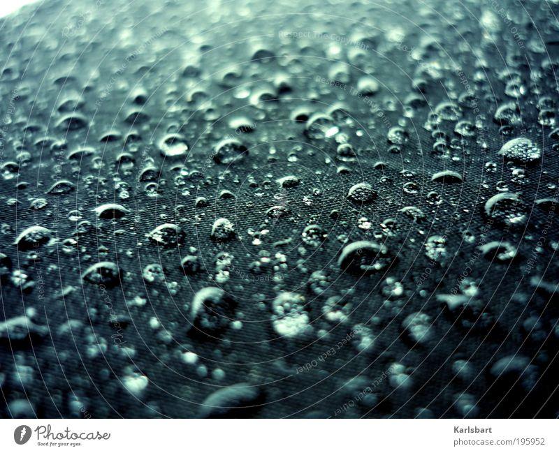 umbrella. Natur Wasser Straße kalt Stil Stimmung Regen nass Verkehr Design Wassertropfen Lifestyle Sicherheit Schutz rein Regenschirm