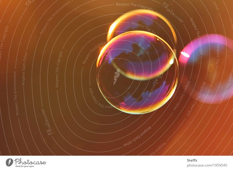 classic bubbles Seifenblase Freude Kugel leicht mehrfarbig Leichtigkeit Symmetrie Glanz Glanzlicht Blase Schwerelosigkeit durchsichtig lichtvoll Schweben