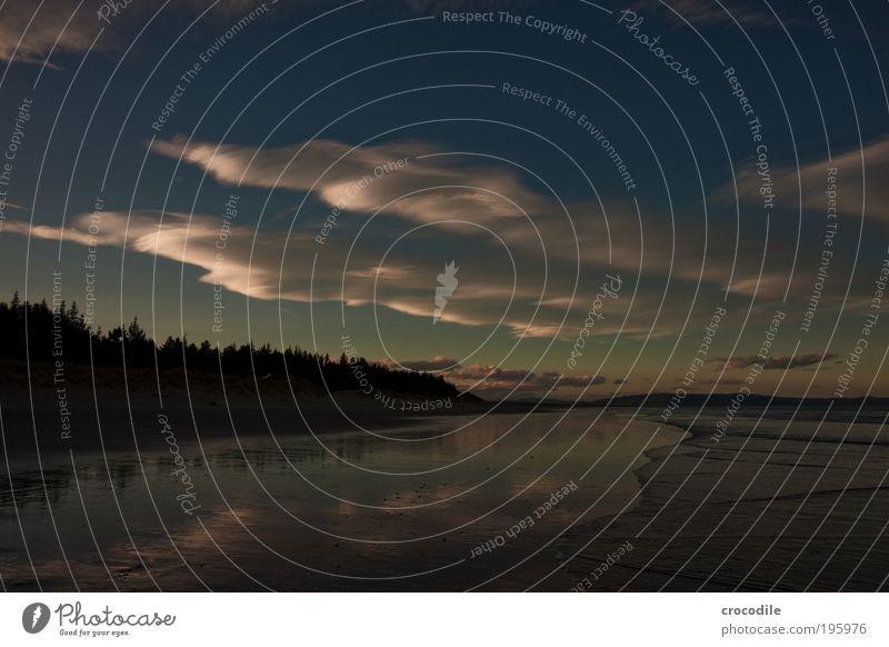 New Zealand I Umwelt Natur Landschaft Pflanze Tier Erde Sand Himmel Wolken Klima Wetter Schönes Wetter Hügel Wellen Küste Strand Gefühle Stimmung Einsamkeit