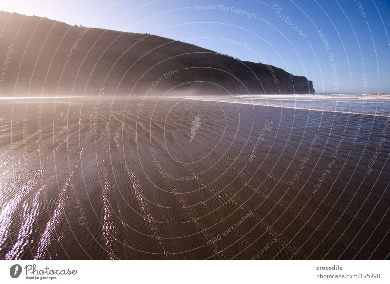 New Zealand XIII Natur schön Himmel Meer Freude Strand Wald dunkel Glück Landschaft Zufriedenheit Wellen Küste Umwelt ästhetisch Lebensfreude