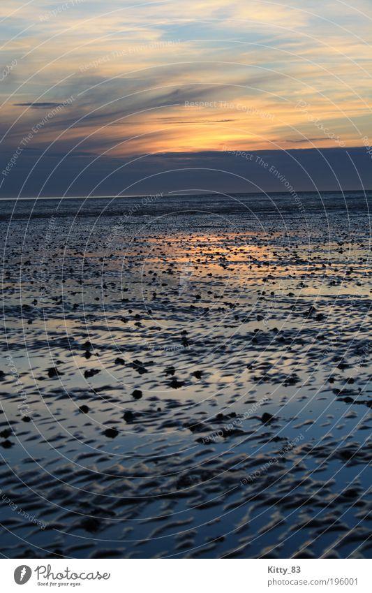 Sonnenuntergang im Wattenmeer Wasser schön Himmel Meer blau Leben Erholung Gefühle Glück träumen Landschaft Zufriedenheit Stimmung rosa nass Horizont