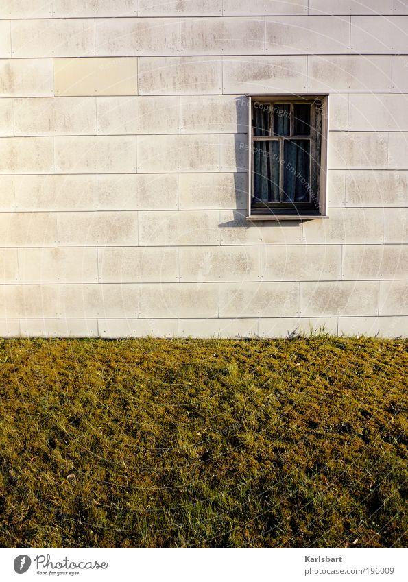 haus. mit fenster zum garten. Natur Ferien & Urlaub & Reisen Sommer Haus Fenster Wiese Wand Gras Garten Mauer Stil Linie Arbeit & Erwerbstätigkeit Wohnung