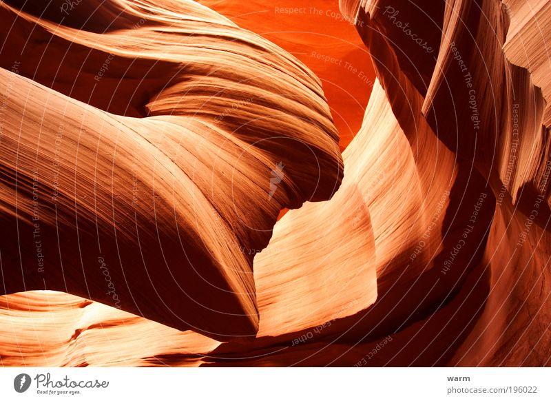 Antelope Canyon Natur Erde Schlucht braun gelb rot Kraft Leidenschaft ruhig Farbfoto Außenaufnahme Menschenleer Tag Licht Schatten Kontrast Lichterscheinung