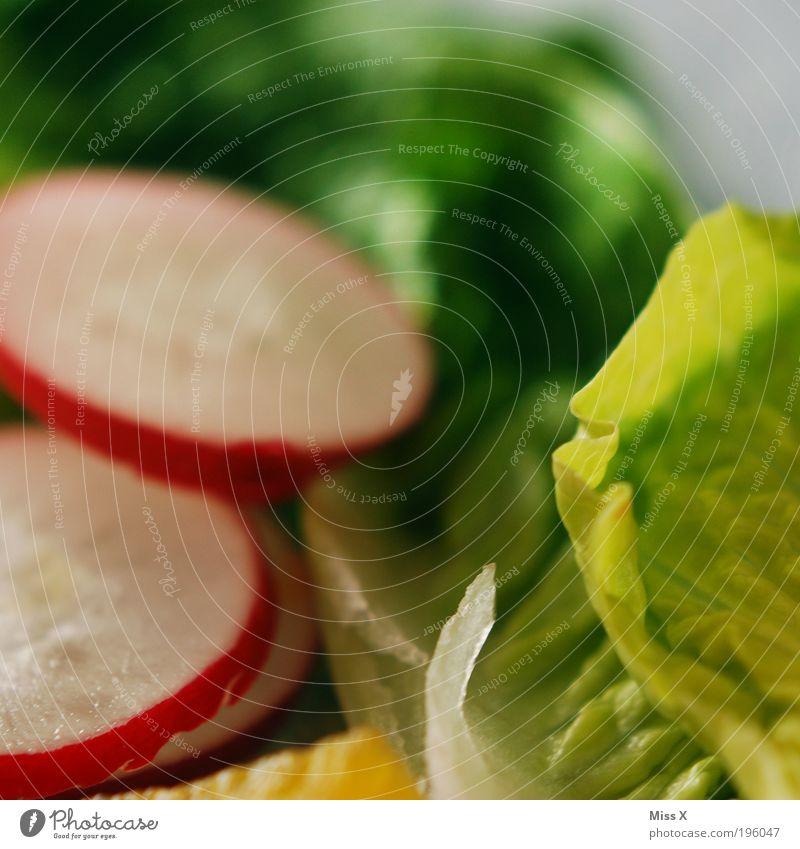 Knackig Ernährung Gesundheit Lebensmittel frisch Übergewicht Gemüse Festessen Abendessen Diät Mittagessen Bioprodukte Salat saftig Krankheit Brunch Büffet