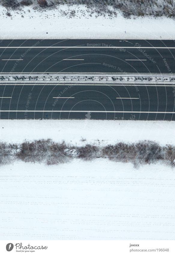 Freie Fahrt weiß Winter Schnee Feld Erde Sträucher Streifen Autobahn Verkehrswege Schneelandschaft Wetter Perspektive Mittelstreifen