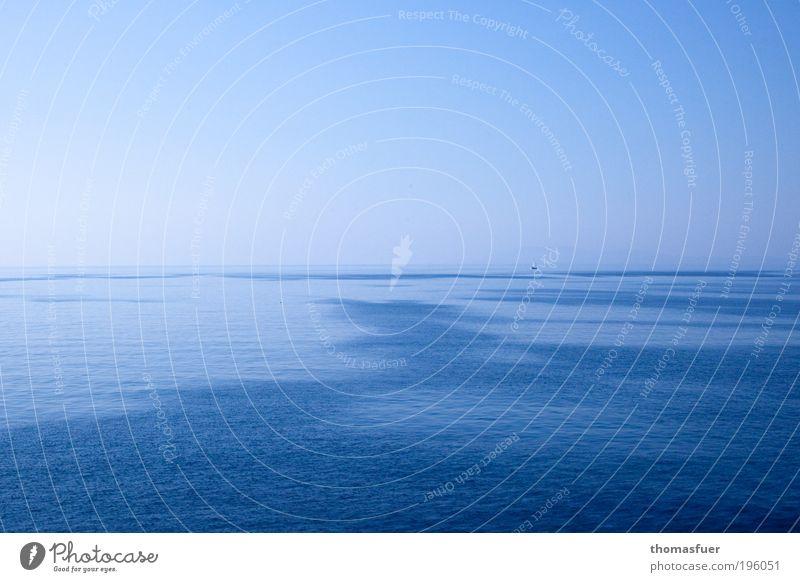 Nurblau Segeln Wasser Himmel Wolkenloser Himmel Sommer Schönes Wetter Meer Schifffahrt Kreuzfahrt Bootsfahrt Segelboot Segelschiff Erholung Unendlichkeit
