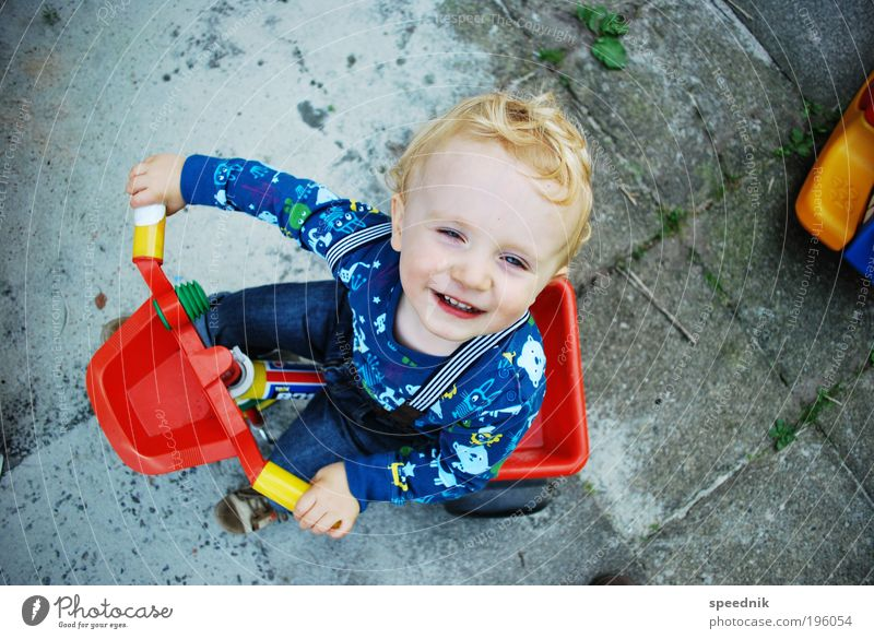 Easy Rider Kind Freude Spielen Junge Bewegung Garten Kindheit Fröhlichkeit fahren Spielzeug Kleinkind Mut Kindergarten Kindererziehung Mensch Personenverkehr