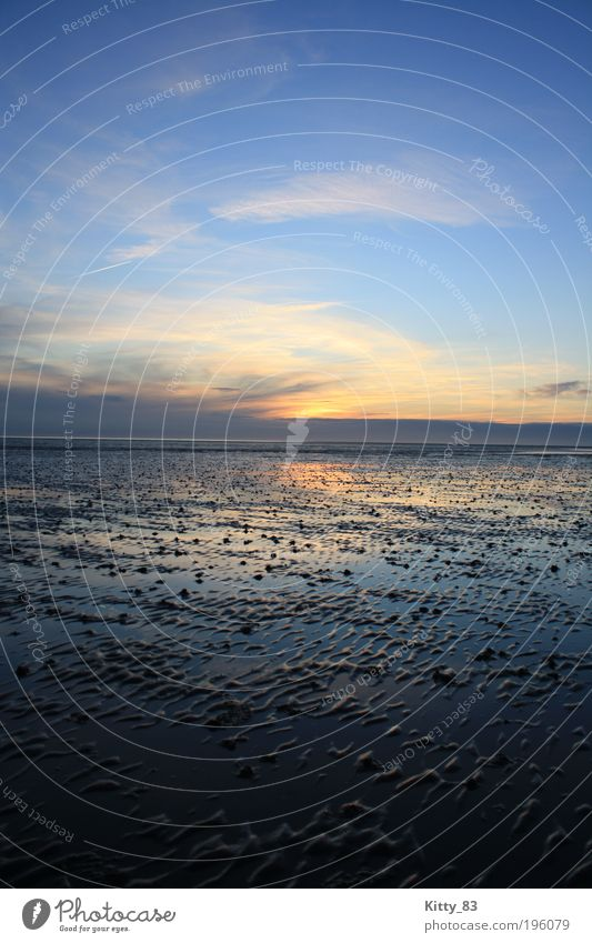 Sonnenuntergang auf dem Meeresgrund Natur Urelemente Wasser Himmel Sonnenaufgang Schönes Wetter Wattenmeer Nordsee Büsum außergewöhnlich fantastisch