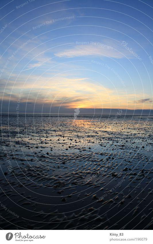 Sonnenuntergang auf dem Meeresgrund Natur Wasser Himmel blau ruhig Erholung Gefühle Freiheit Zufriedenheit Stimmung Zusammensein Wellen rosa ästhetisch