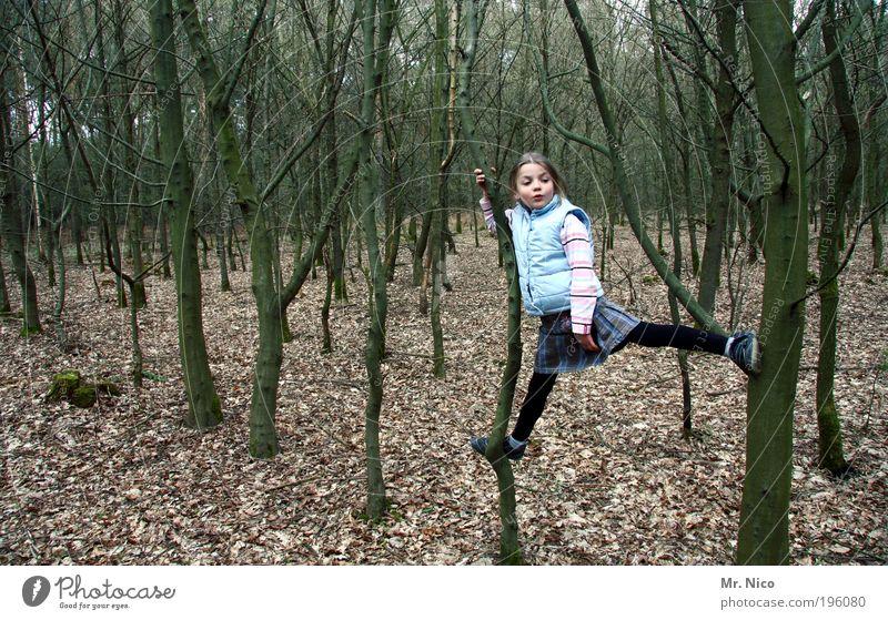 lllllll-lll Abenteuer wandern Kind Kindheit Natur Baum Wald Waldboden Klettern Spagat Weste frech Spielen Aktion Herbst strumpfhose festhalten Blatt Laub Turnen