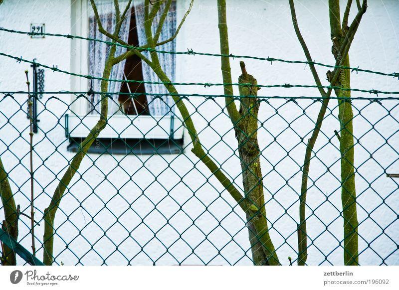 Laube Natur Wand Fenster Garten Zaun Grenze März Draht Loggia Stacheldraht Gartenhaus Grundstück Schrebergarten Stacheldrahtzaun Kolonie Maschendrahtzaun