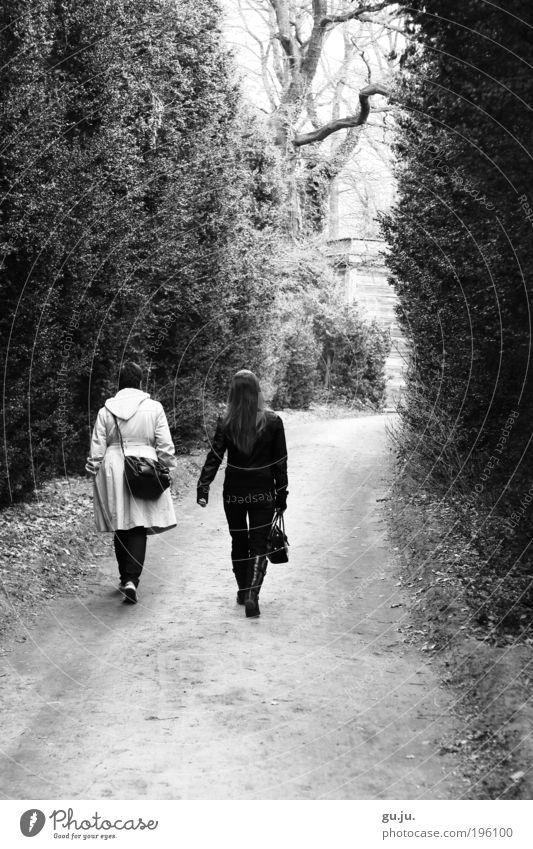 An einem Sonntag im April... Mensch Frau Natur weiß Baum schwarz Erwachsene Wald Erholung Landschaft Wege & Pfade Freundschaft Park Erde Freizeit & Hobby laufen