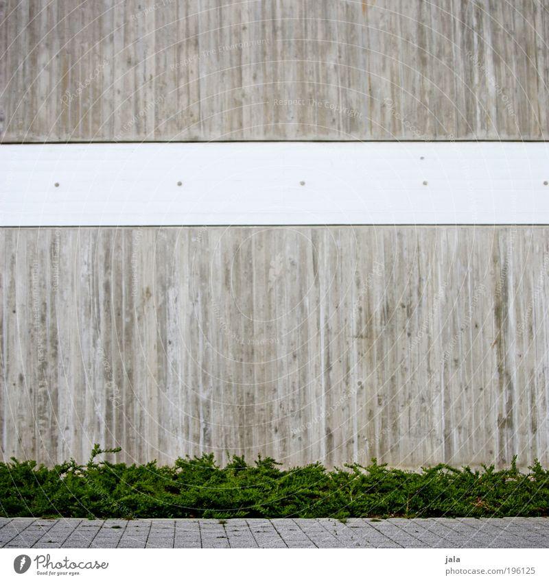 beton weiß grün Pflanze Wand grau Mauer Gebäude Architektur Beton Fassade Sträucher einfach Bauwerk Pflastersteine eckig Grünpflanze